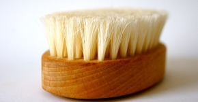 Best Dry Brush For Cellulite