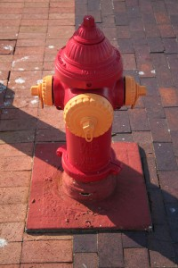 Best butt exercises #9 fire hydrants